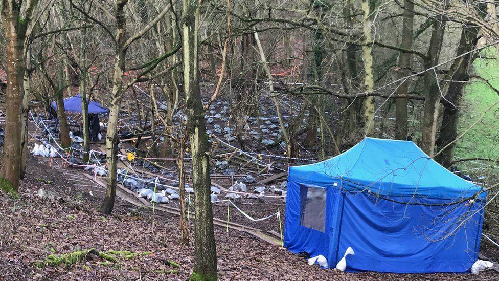 Crime scene in Beaconsfield woodland