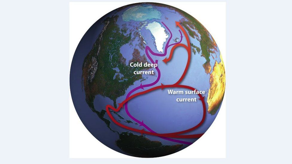 """The Ocean Conveyor. A global system of currents, often called the """"ocean conveyor"""", carries warm surface waters from the tropics northward (c) Jack Cook, Woods Hole Oceanographic Institution"""