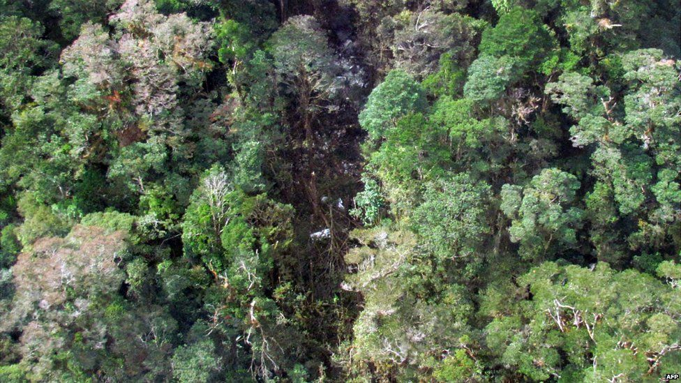 An image showing the wreckage from a Trigana Air flight scattered in trees in the mountainous Oksibil area in Papua province - 17 August 2015