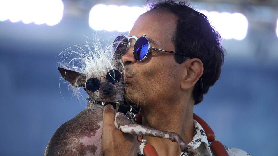 مسابقه زشت ترین سگ جهان