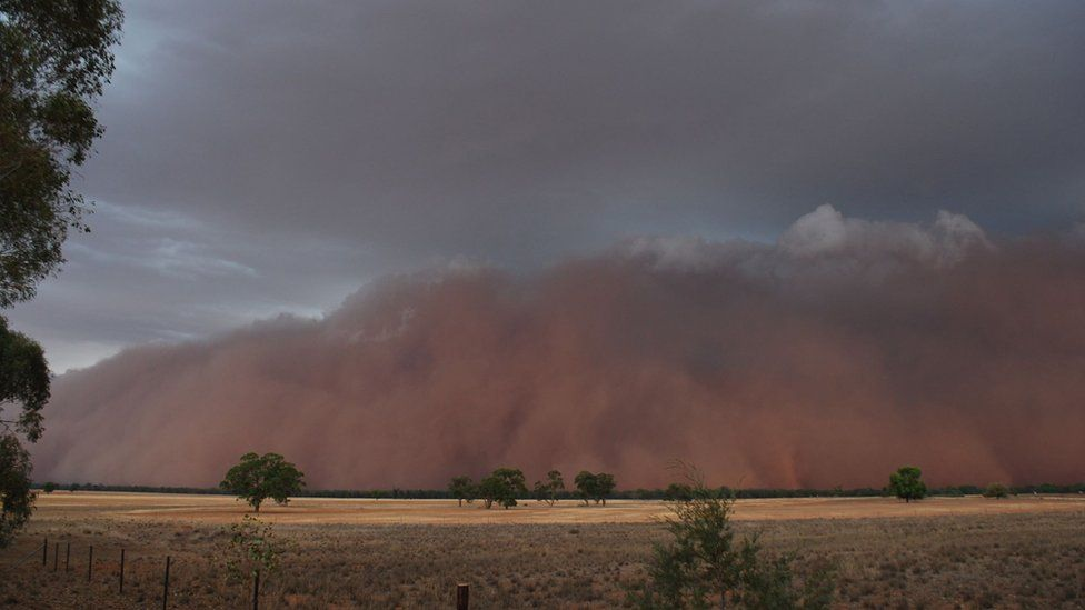 Huge dust cloud seen on the horizon in the town of Trundle in New South Wales