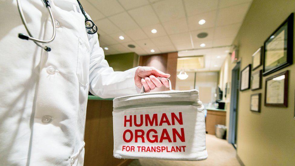Medic holding a bag marked 'human organ'