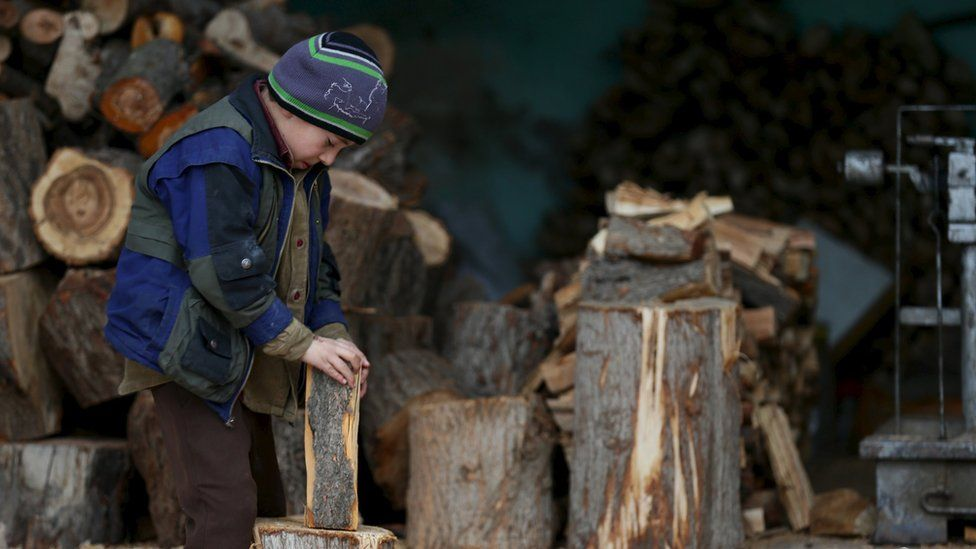 A boy inspects a firewood in the town of Douma, eastern Ghouta in Damascus, Syria (January 5, 2016)