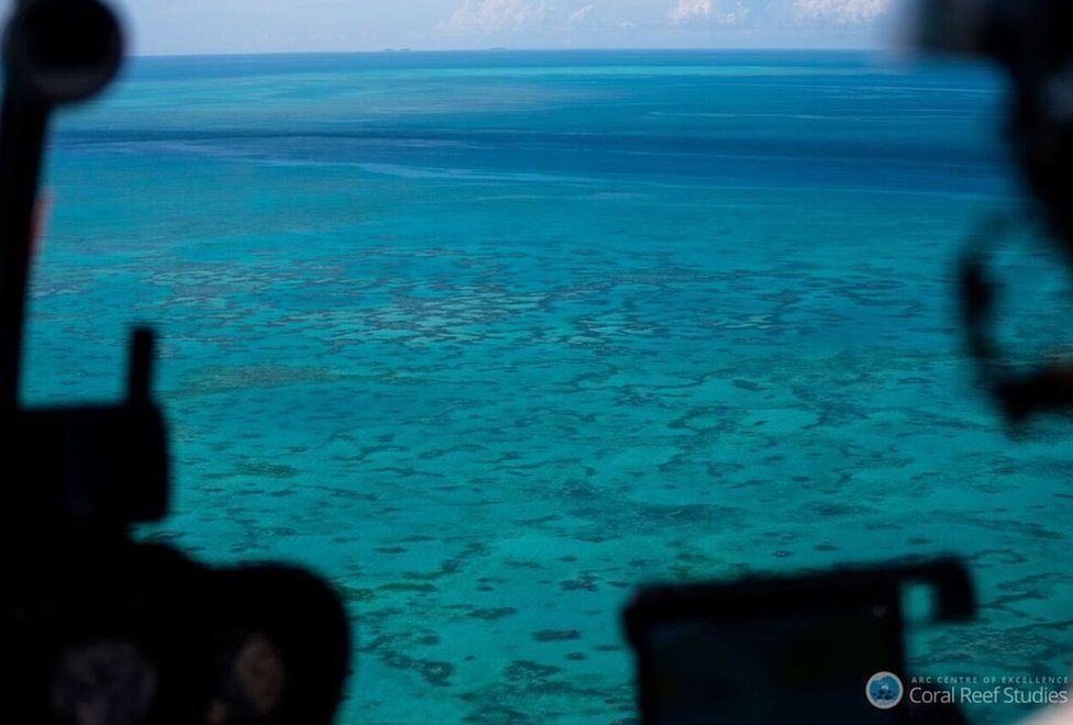 Aerial surveys of the Great Barrier Reef
