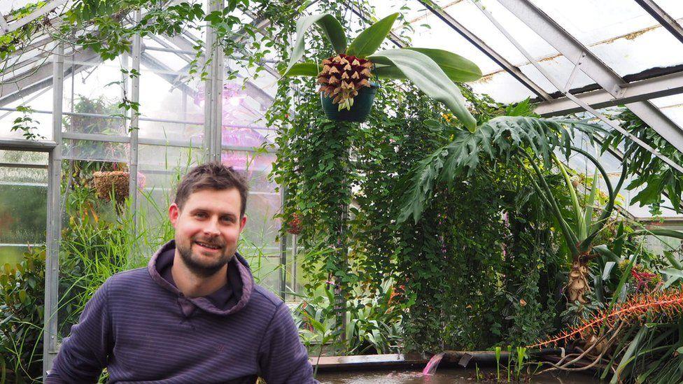 Alex Summers by the bulbophyllum phaleenopsis