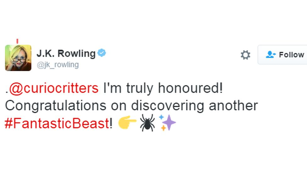 """""""Congratulations on discovering another Fantastic Beast"""" said JK Rowling"""