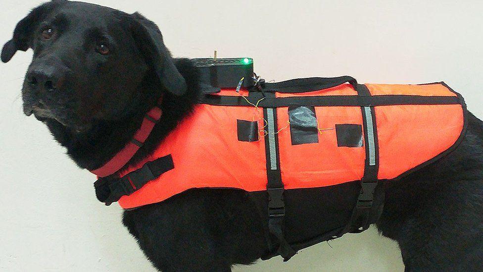 Tai and his haptic vest