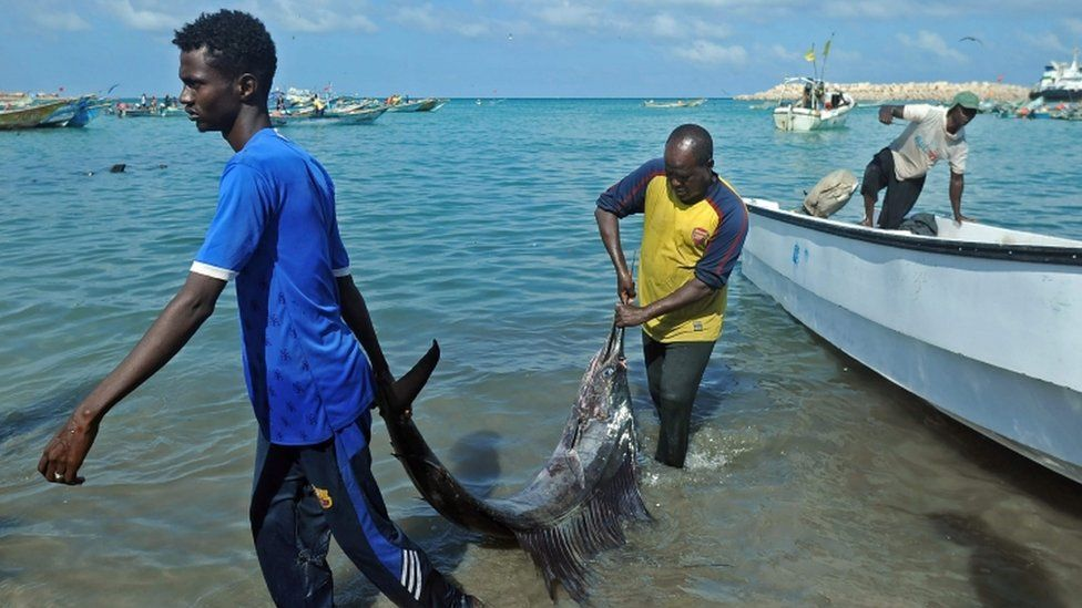 Somali vendors offload a catch from fishing boats at Bosaso beach in Puntland northeastern Somalia.