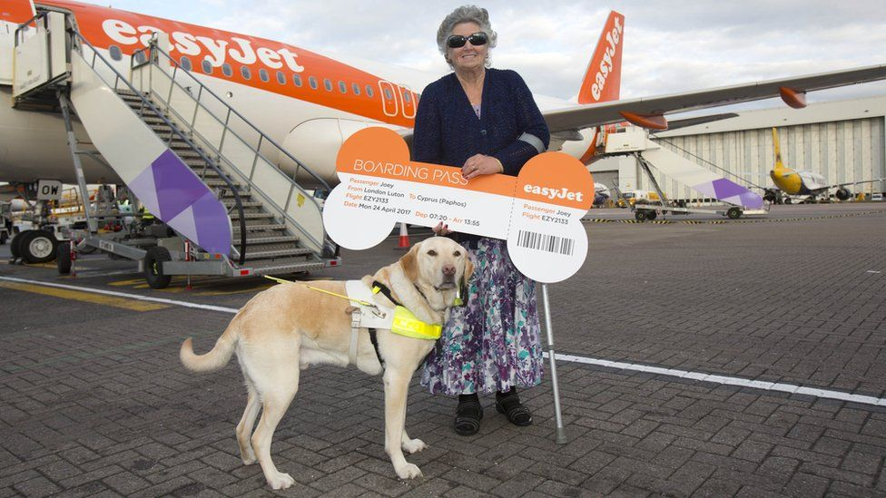 Guide dog Joey and owner owner Jan Gibson