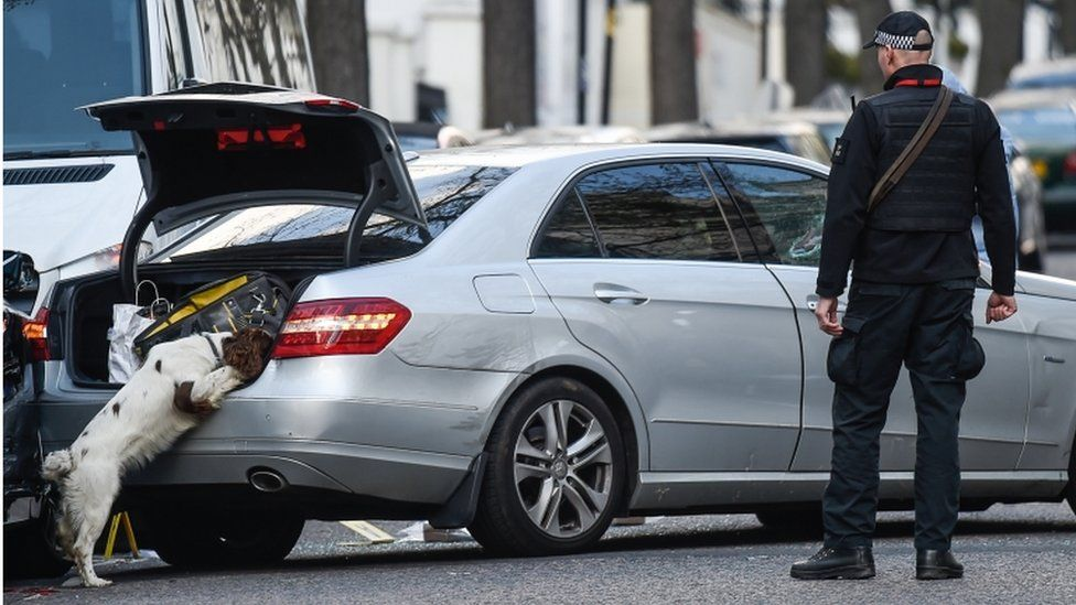 Sniffer dog searching the car used to ram the ambassador's vehicle