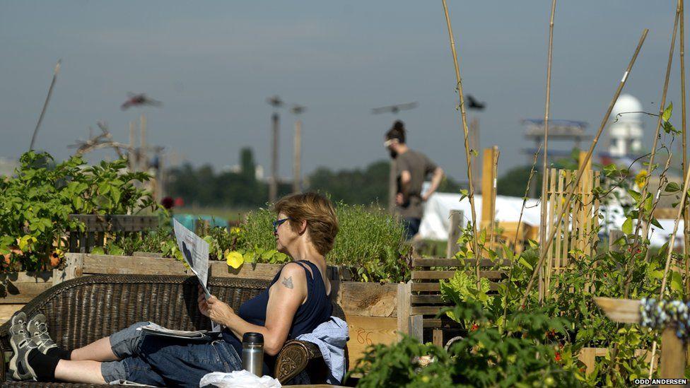 Gardeners at Tempelhof airport
