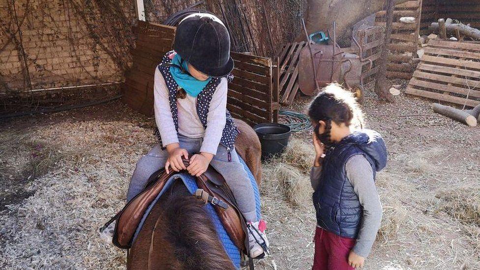 Friday pony rides.