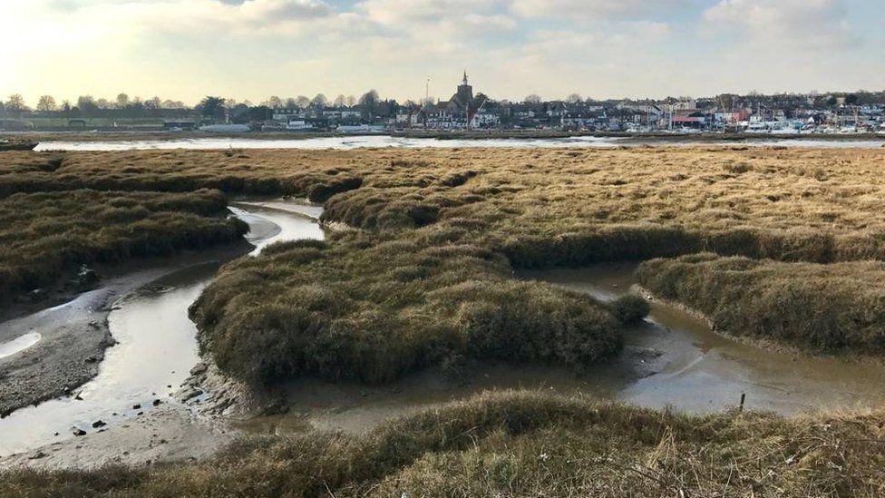 Sal marshes in Maldon, Essex