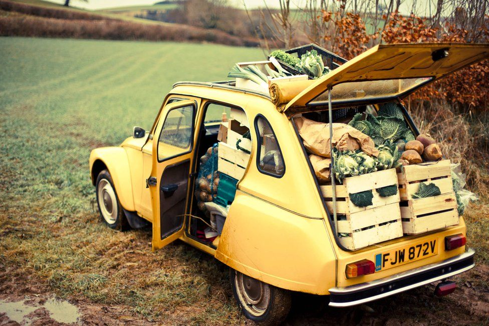 Guy first started selling veg from the back of his car to friends in Devon in the 1990s