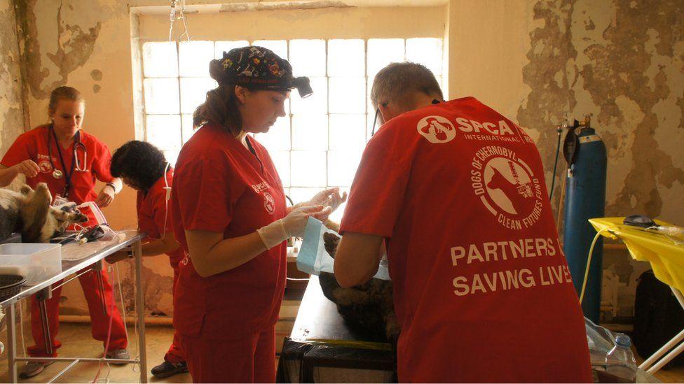 Волонтери в операційній