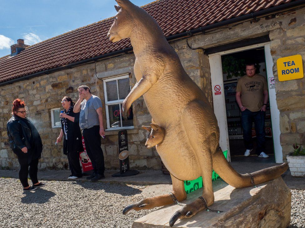 Entrance to the tea room at Esshottheugh Animal Park. Morpeth, Northumberland.