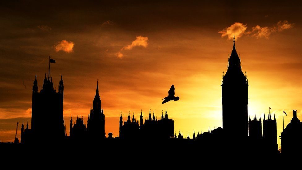 Houses of Parliament (with bird flying in the sky above) silhouetted against the October sunset