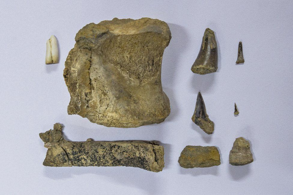 Geological finds