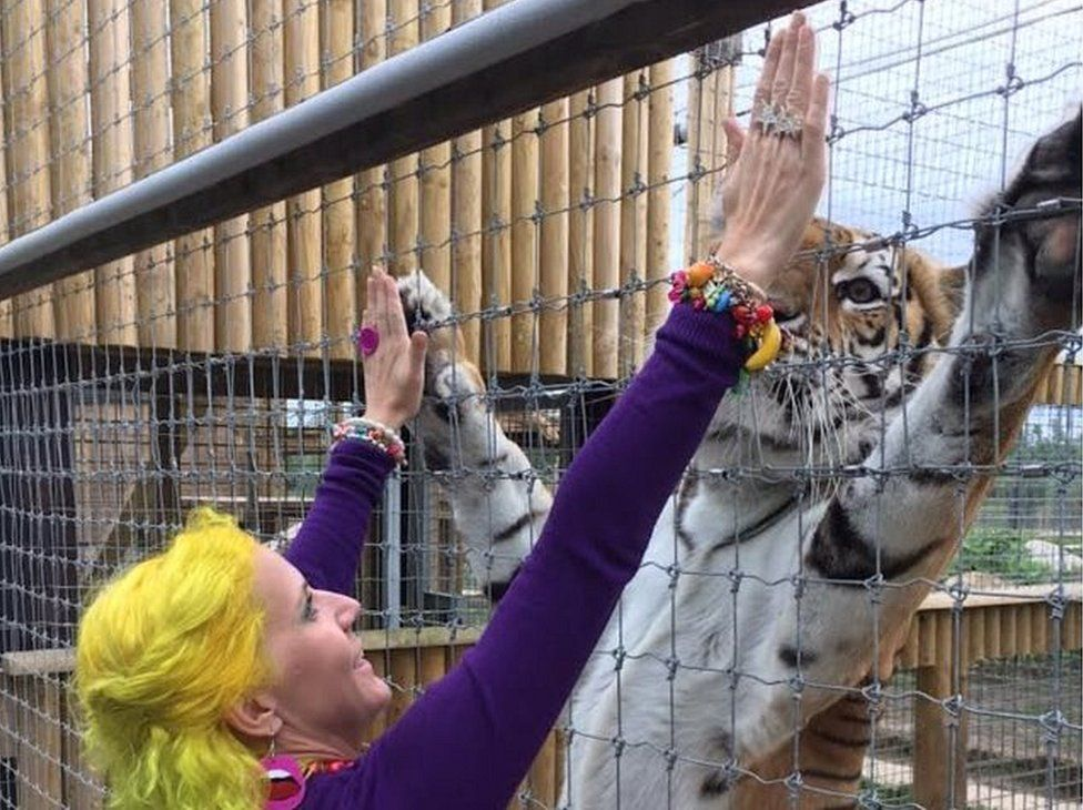 Gina Parkin fed tigers at Lincolnshire Wildlife Park