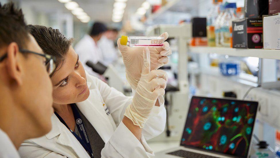 Cancer Council scientists examine a glass vial