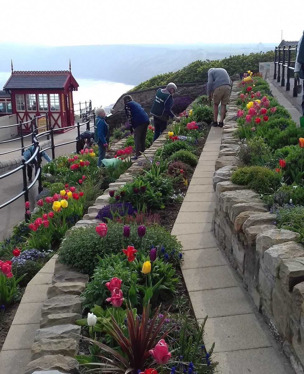 Saltburn flower display