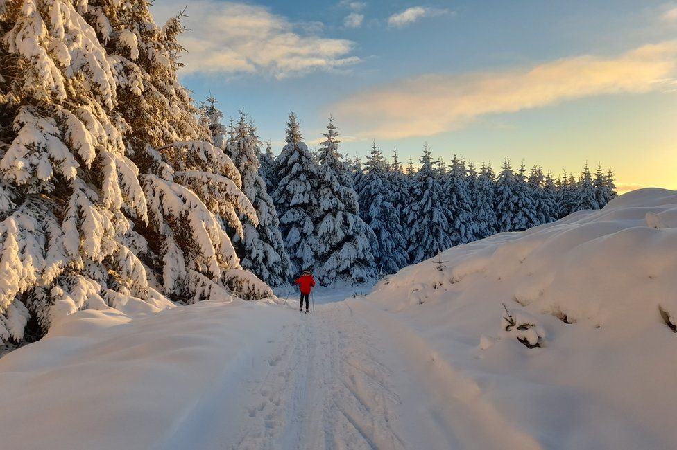 Alpine conditions at Clashindarroch forest