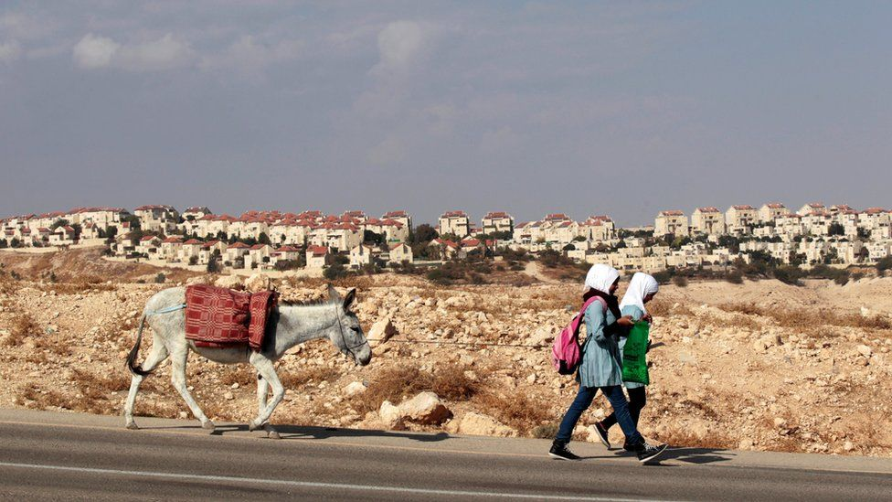 Palestinian schoolgirls walk with a donkey as the West Bank Jewish settlement of Maale Adumim, near Jerusalem, is seen in the background on 13 November 2013
