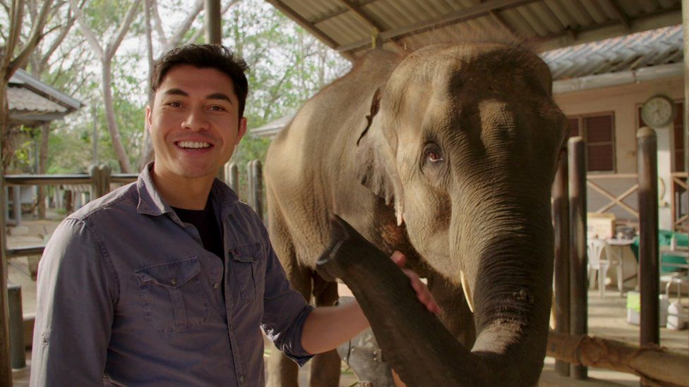 Henry Golding and an elephant