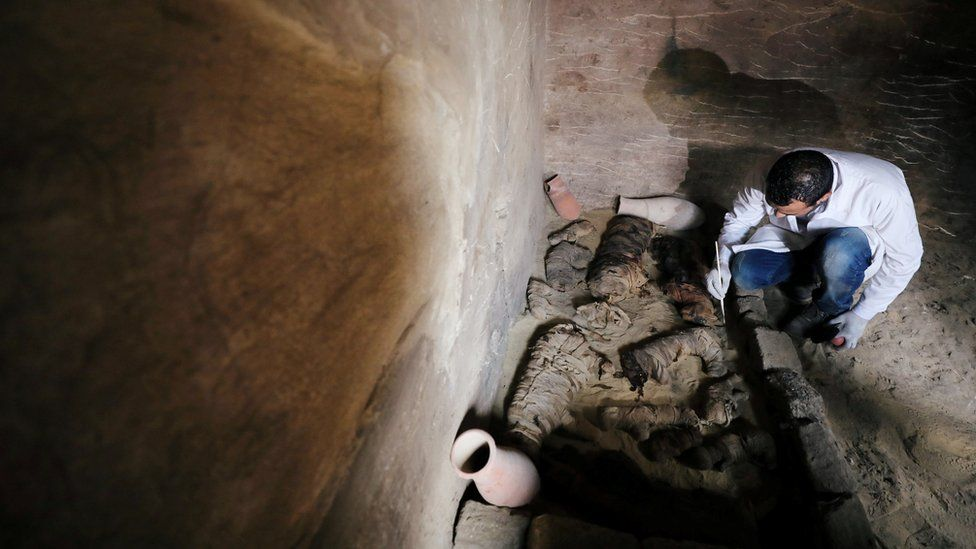 An Egyptian archaeologist works on the mummified cats inside the tomb of Khufu-Imhat, at the Saqqara area near its necropolis, in Giza, Egypt November 10, 2018