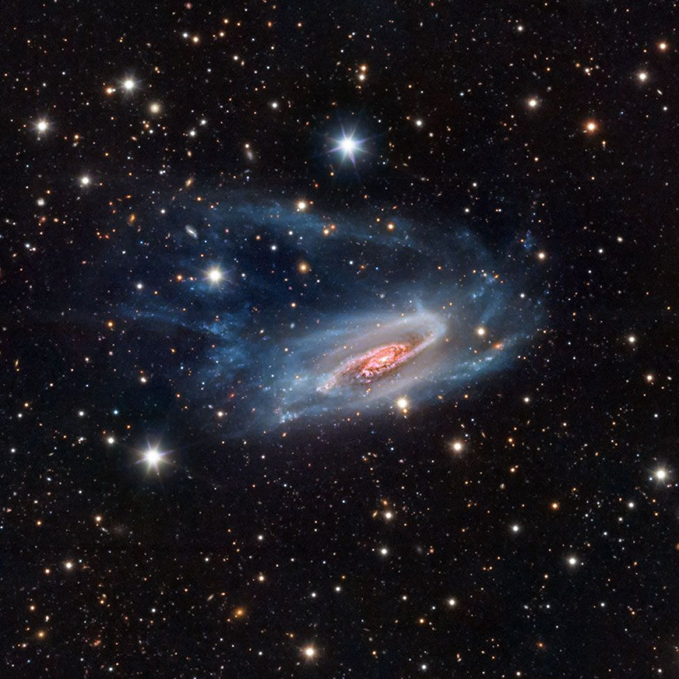 An astronomy image showing NGC 3981 galaxy by Bernard Miller