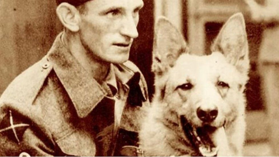 Khan, the German Shepherd who served in the British Army during WWWII with his handler Jimmy Muldoon