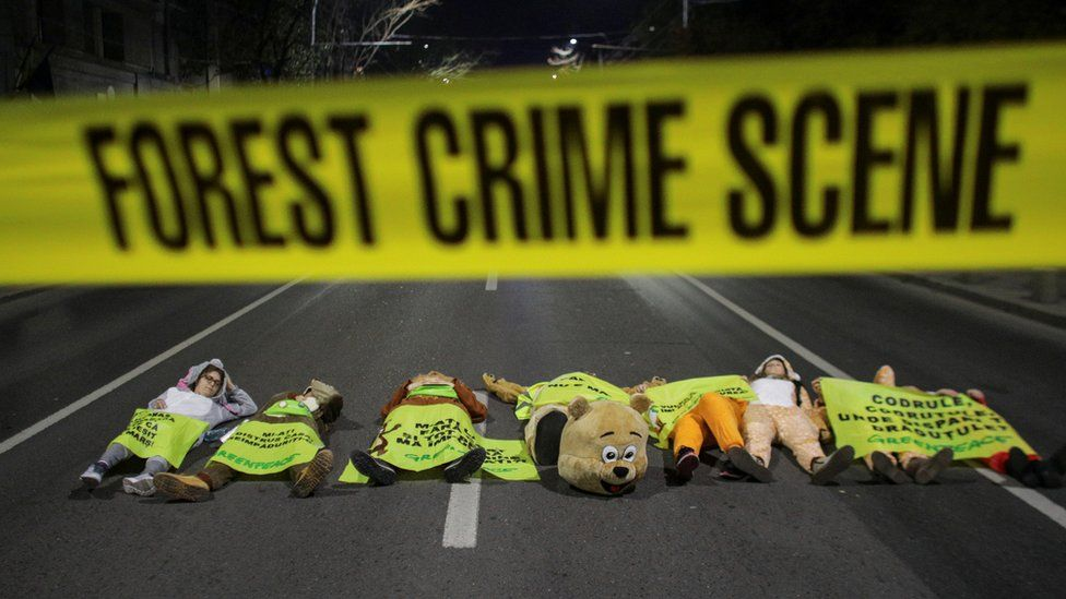 """Activists in animal costumes lie on the road in front of fake police tape reading """"forest crime scene"""""""