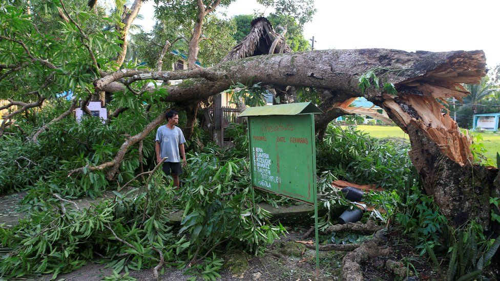 A resident looks at a tree uprooted by strong winds brought by Typhoon Nock-ten which cut through Camarines Sur, Bicol region, central Philippines