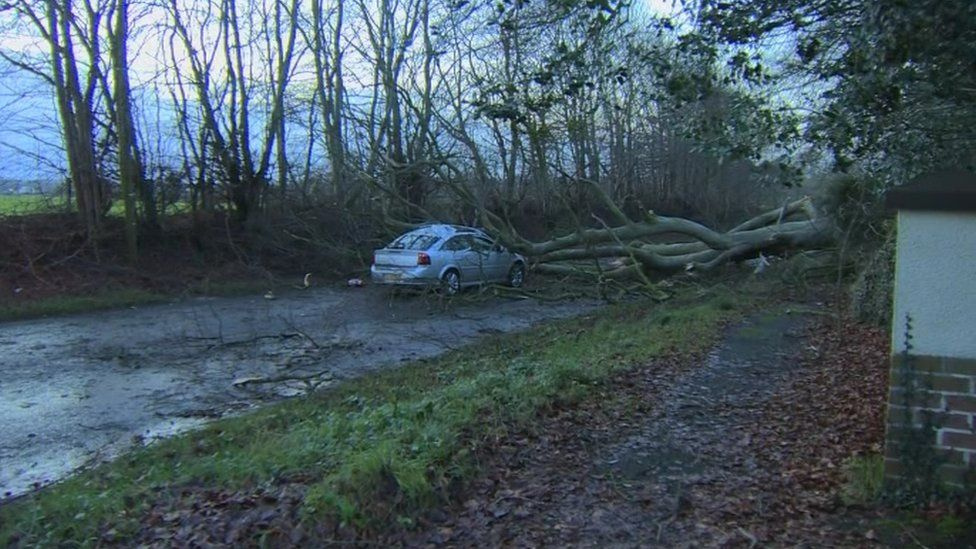 The worst affected areas are counties Antrim, Tyrone, and Londonderry - this car was crushed by a tree on the Mullagh Road in Maghera