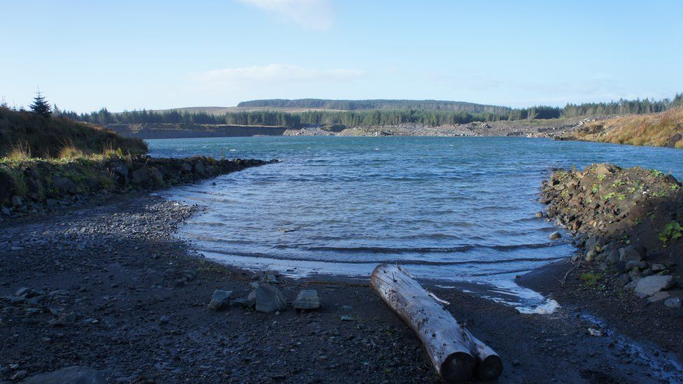 Coyle Water, North Kyle Forest