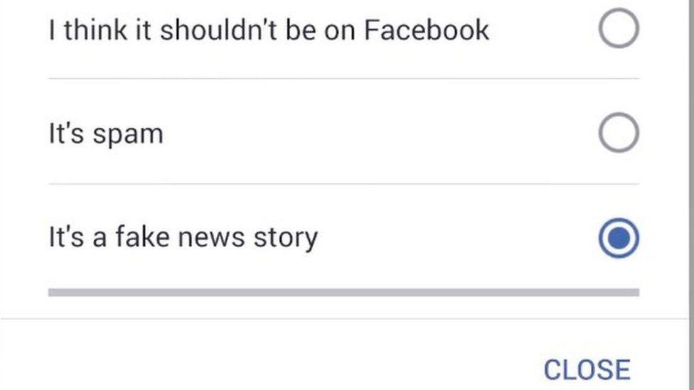 "Screengrab of Facebook ""Report post"" page"