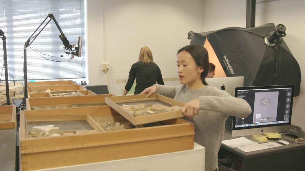 Team at the Smithsonian digitising the collection
