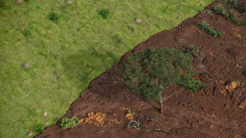 An aerial view of land partially covered in thick mud after the dam collapsed