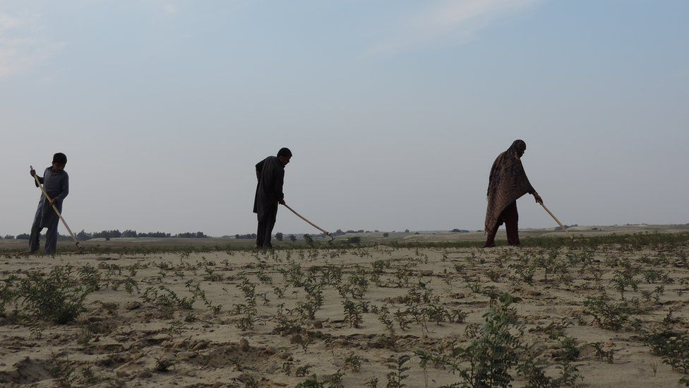 Abid Hussain, his wife and son, residents of Darbola village in Thal desert