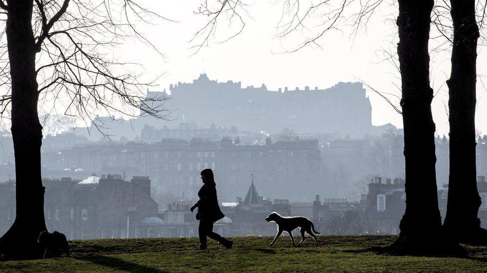 A woman walking her dogs in Inverleith Park, Edinburgh