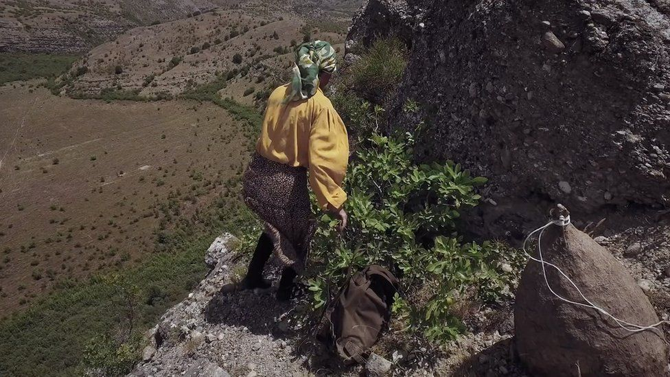 Hatidze approaches a beehive on a cliff