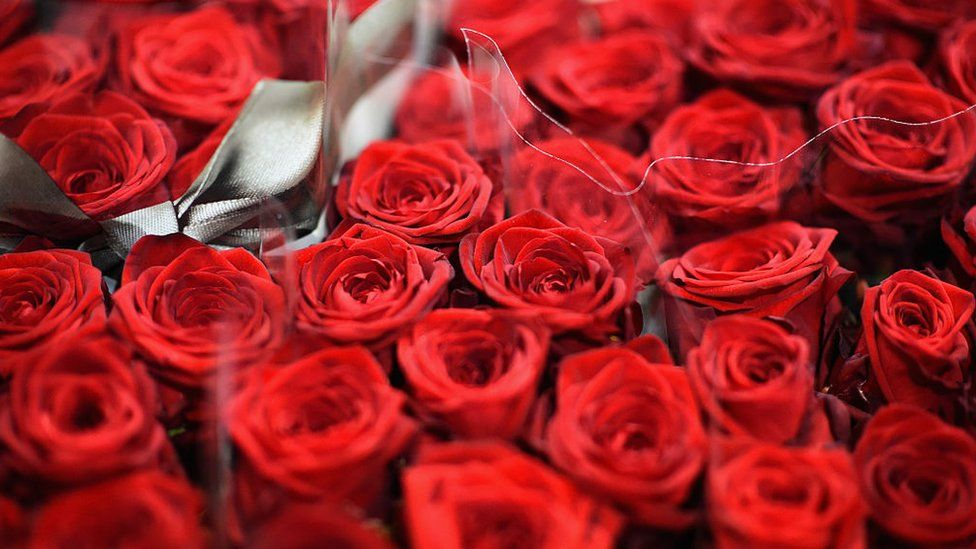 Roses at a flower shop ahead of Valentines Day