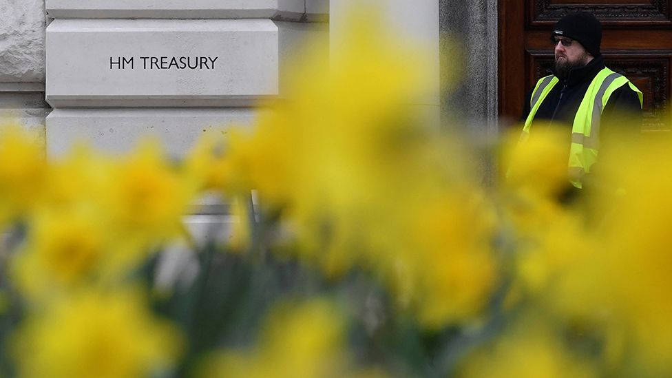 Daffodils in front of the Treasury