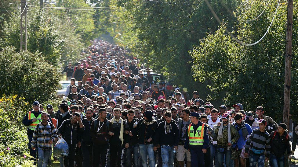 Migrants cross from Hungary into Austria on route to northern Europe, September 2015