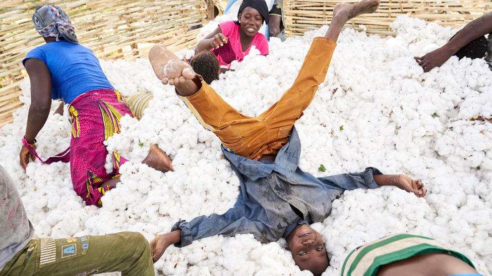 Children have fun in a pile of cotton during the harvest in southern Mali - 25 November 2018