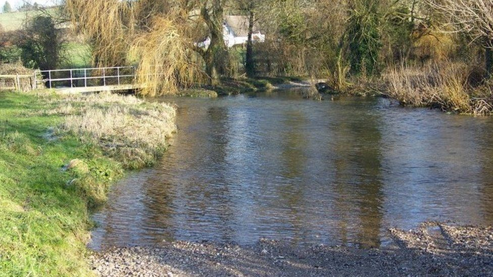 River Tarrant at Tarrant Rushton