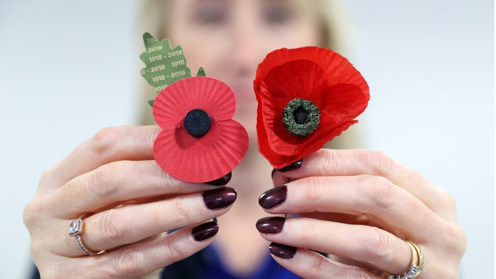 The poppies found by Mr Axtell will be taken to the Cenotaph