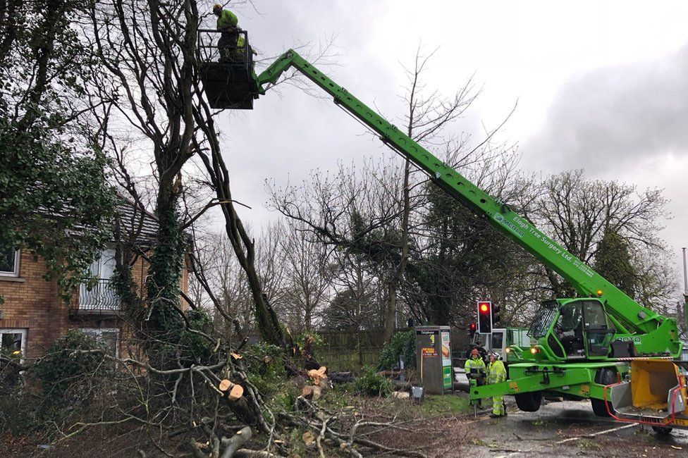 Tree surgeons clearing fallen trees from Broomhill Avenue in Londonderry.
