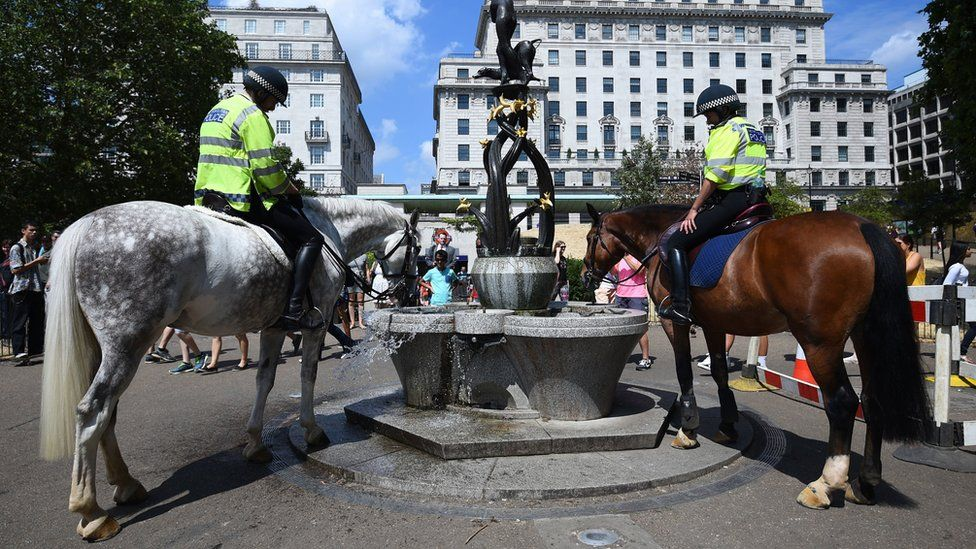 Police horses taking a drink from a fountain in Green Park in central London