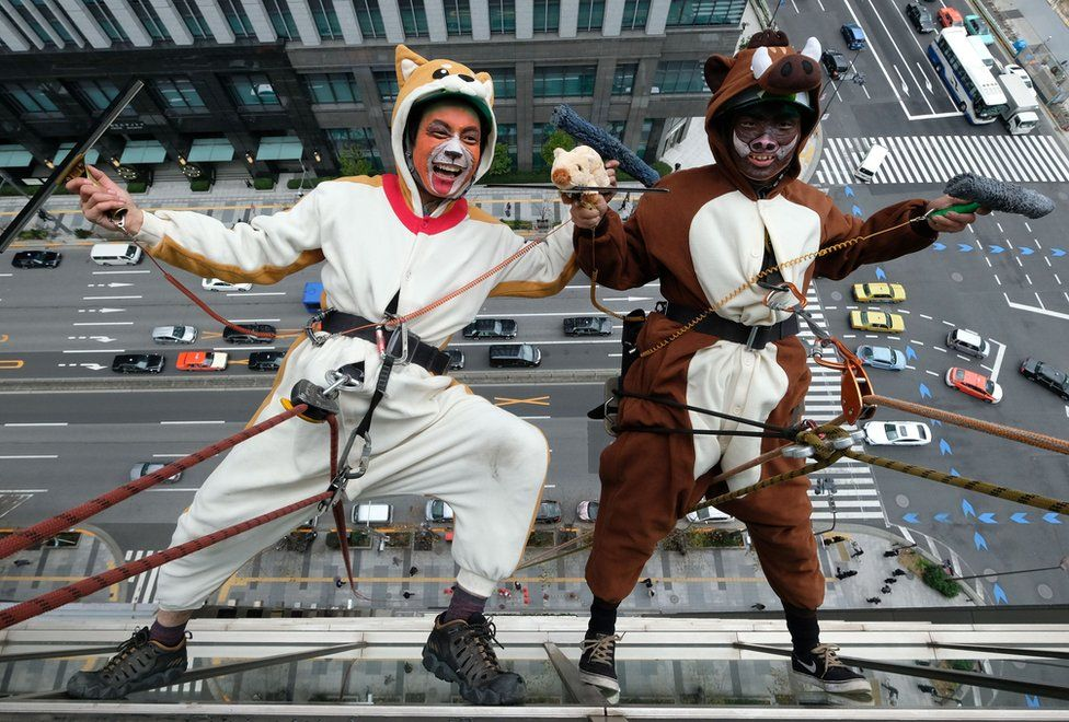 Window cleaners hang off a building wearing animal costumes